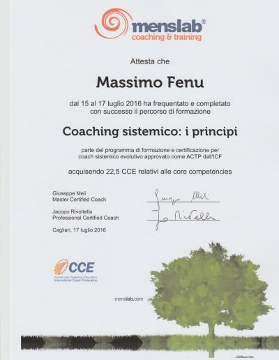 coaching sistemico