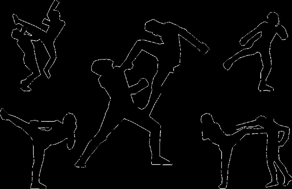 Diverse tecniche di arti marziali stilizzate
